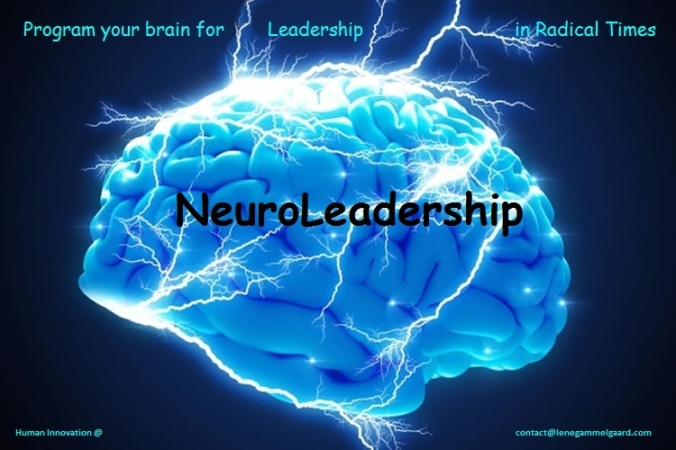 brain-neuroleadership